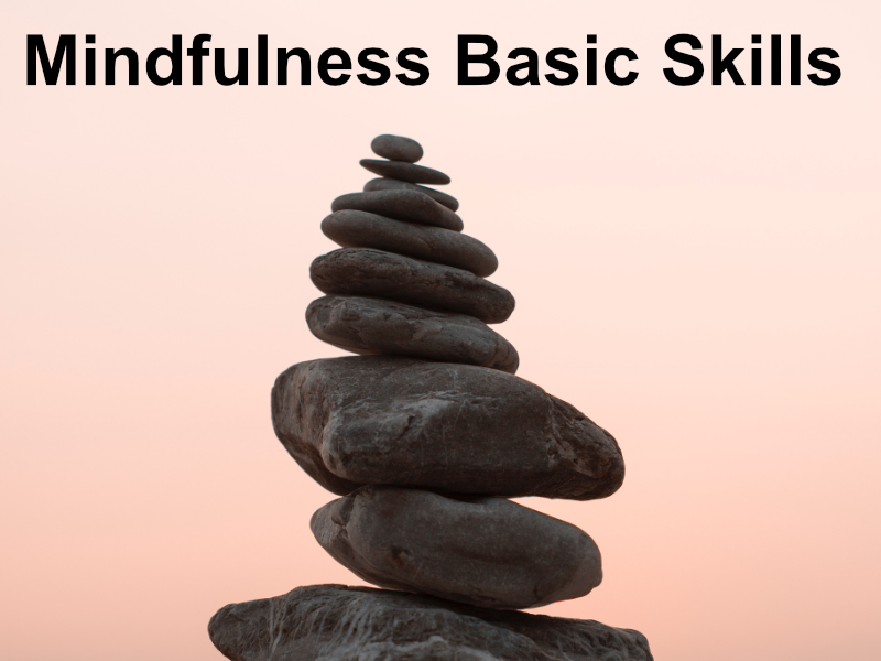 Mindfulness basic skills