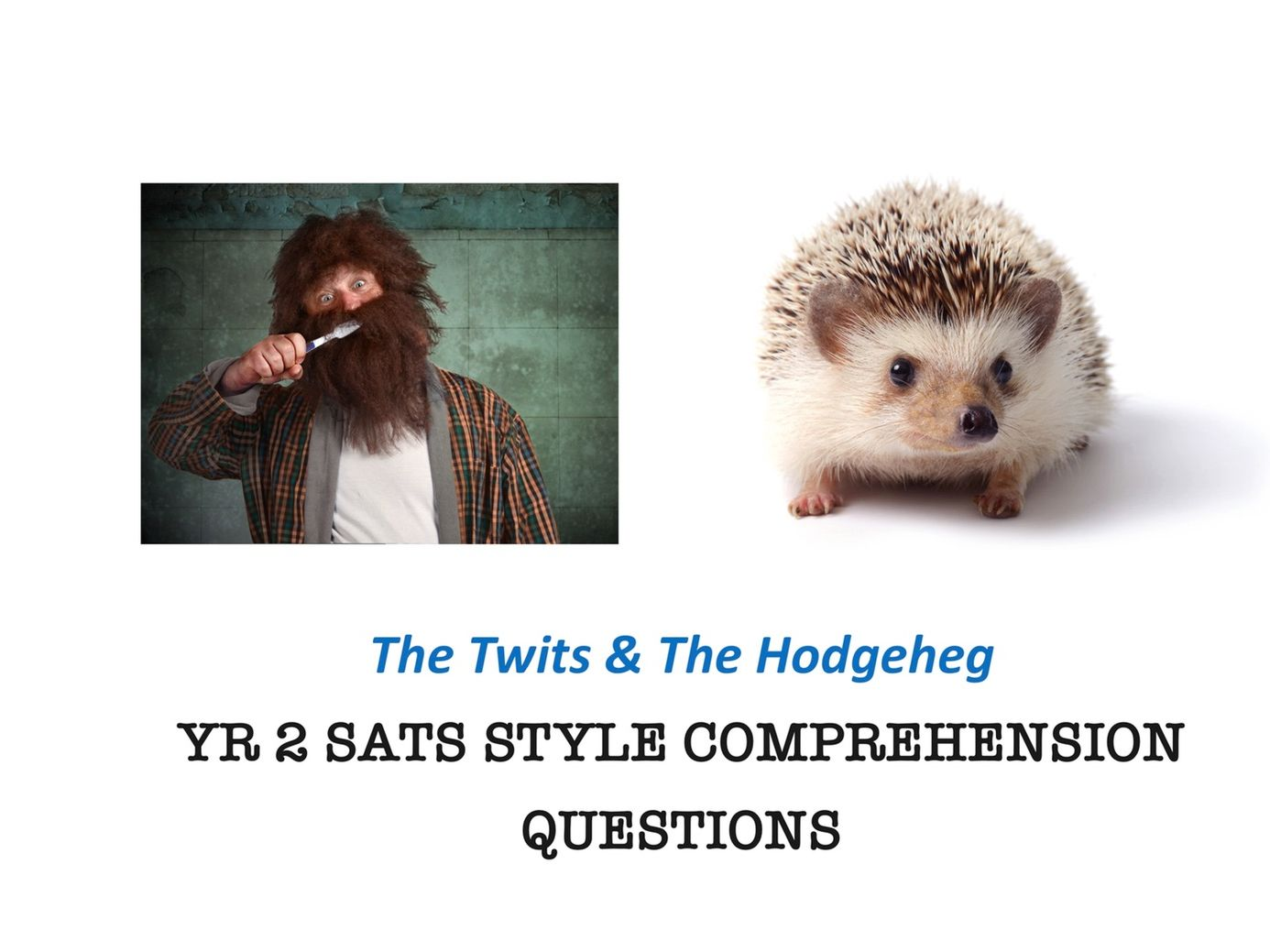 Yr 2 SATs Style Comprehension Questions