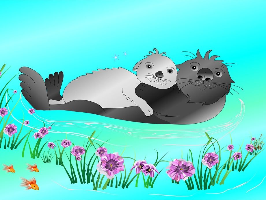 Quiz on The Otter who wanted to know by Jill Tomlinson