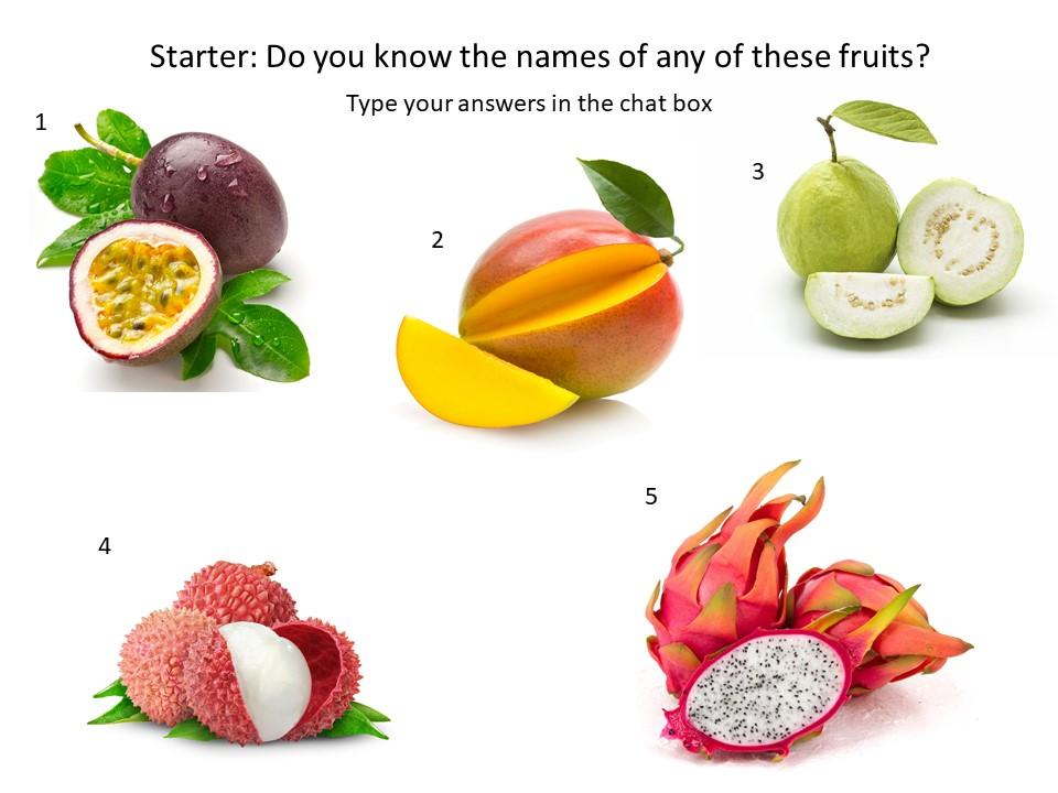 Name that fruit starter task