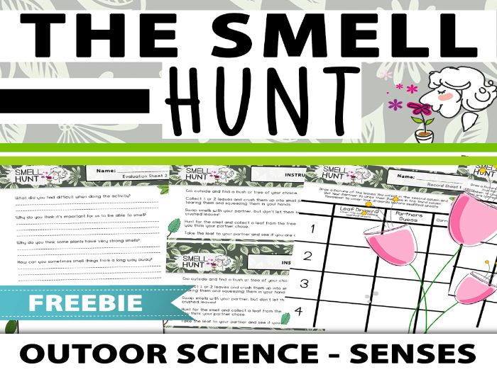 Our Senses - The Smell Hunt: Outdoor Science Activity
