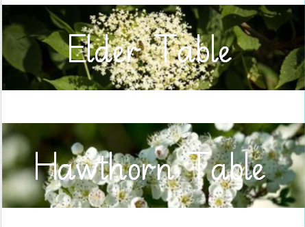 Tree Table Names