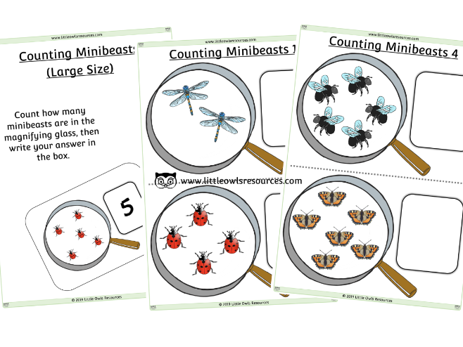 Minibeasts Counting Sheets (large) - EDITABLE