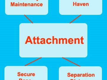 PPT on ATTACHMENT with activities - prepared for BTEC Childcare
