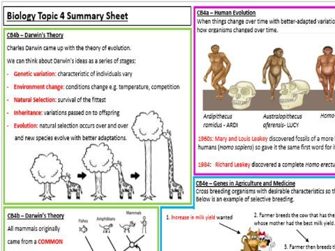 Edexcel Biology CB4 Revision Summary Worksheets