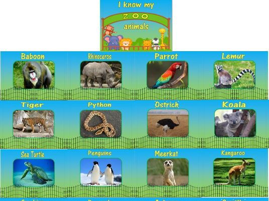A4 Zoo Poster Pack 25 A4 posters