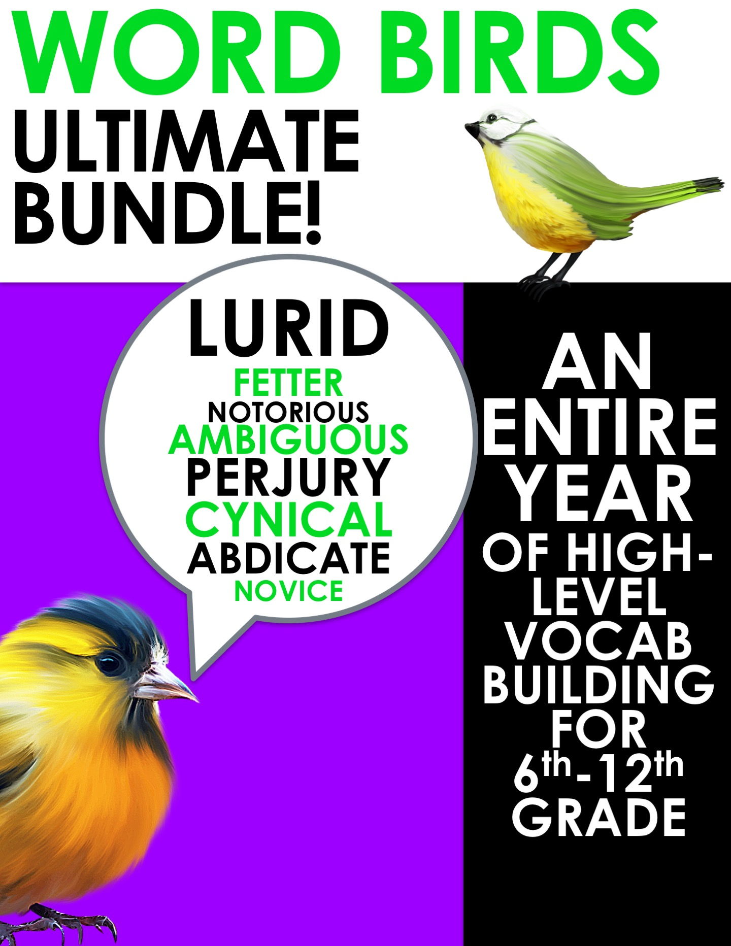 Word Birds Word of the Week Vocabulary Builder: 6th-12th Grade GROWING BUNDLE!