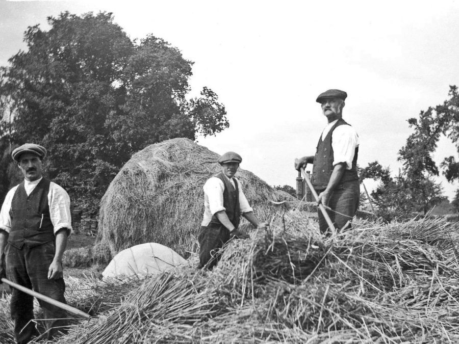 Inequalities of Wealth - Agricultural Problems within the USA during the 1920s