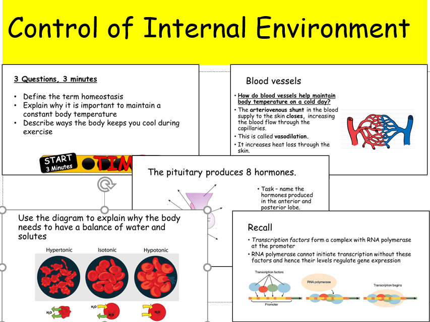 IAL Biology 7C Control of Internal Environment