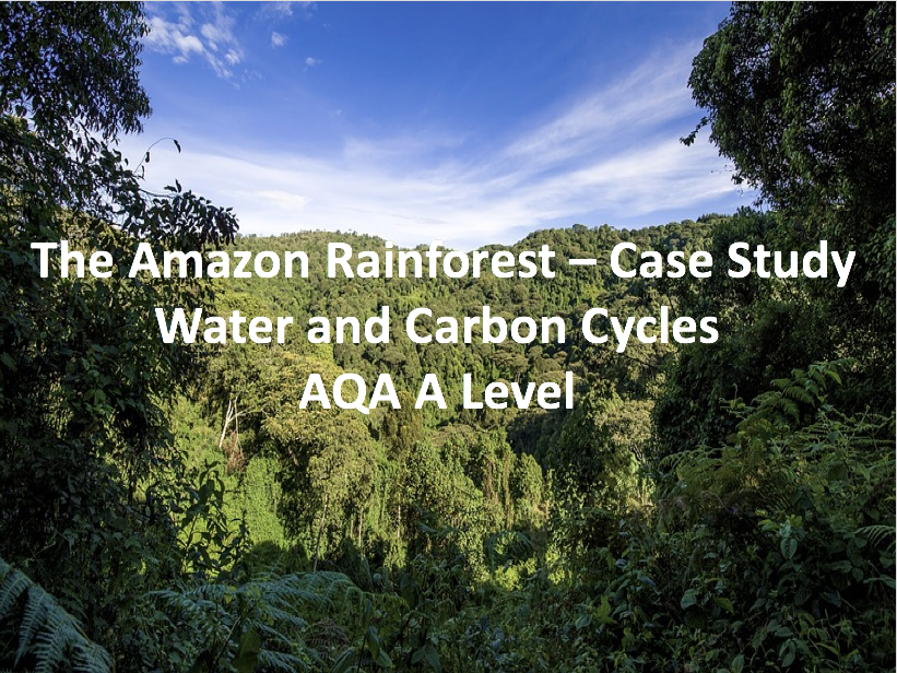 The Amazon Rainforest - Case Study - AQA A Level Geography