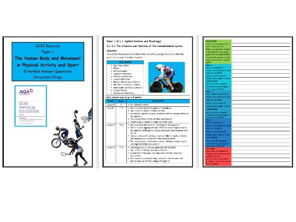 GCSE PE - AQA (9-1) - Complete Paper 1 - 31 X Structure Strips (Extended Questions)