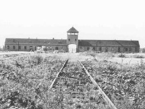 The Final Solution Lesson