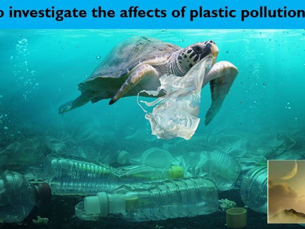 Non-Chronological Reports (Plastic Pollution) - 4 Lessons - Week 2