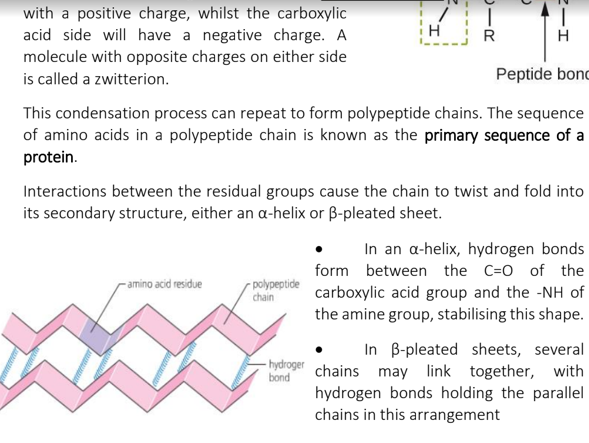 A Level Biology - Edexcel Topic 2 Notes