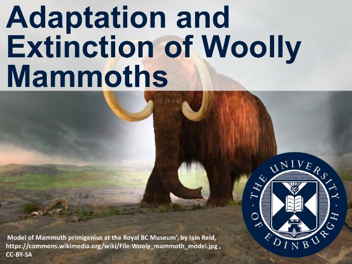 Adaptation and extinction of woolly mammoths (Interdisciplinary Learning)