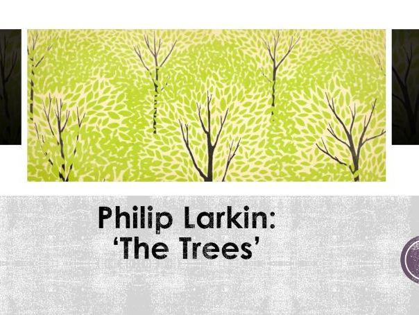 Unseen Poetry/ Anthology Poetry - The Trees by Philip Larkin