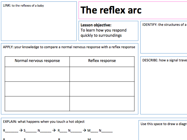 The Reflex Arc - Lesson Presentations and A3 Lesson Map