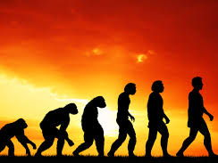 How Convincing Is The Theory Of Evolution