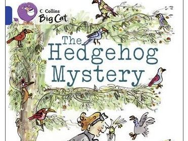 The Hedgehog Mystery Year 4 Guided Reading Pack