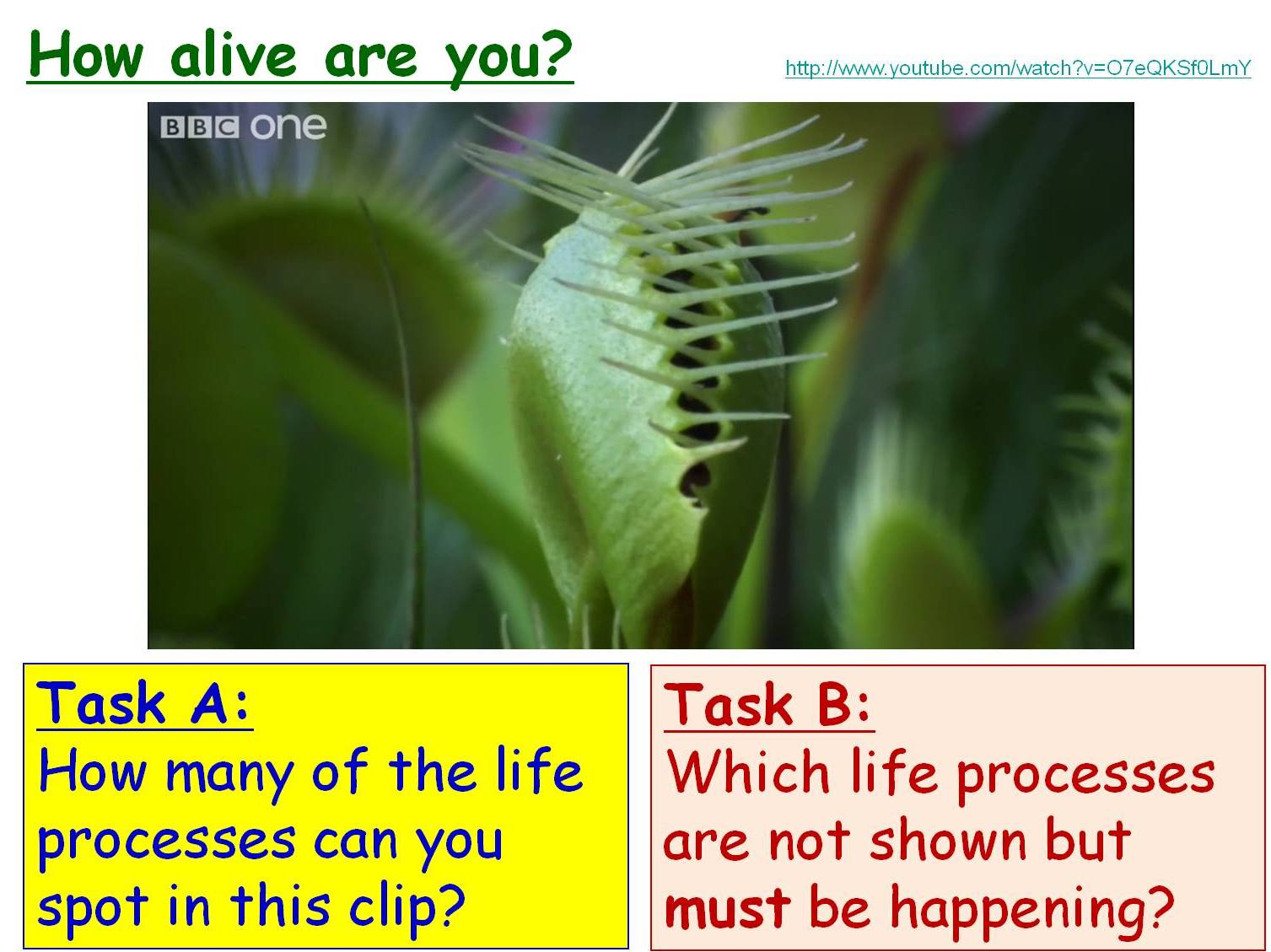 Cells, Tissues and Organs Year 7 Topic- 6 full lessons (KS3 7A)