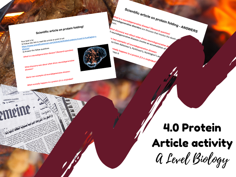 Protein Scientific article and questions activity (Biomolecules) - A Level Biology