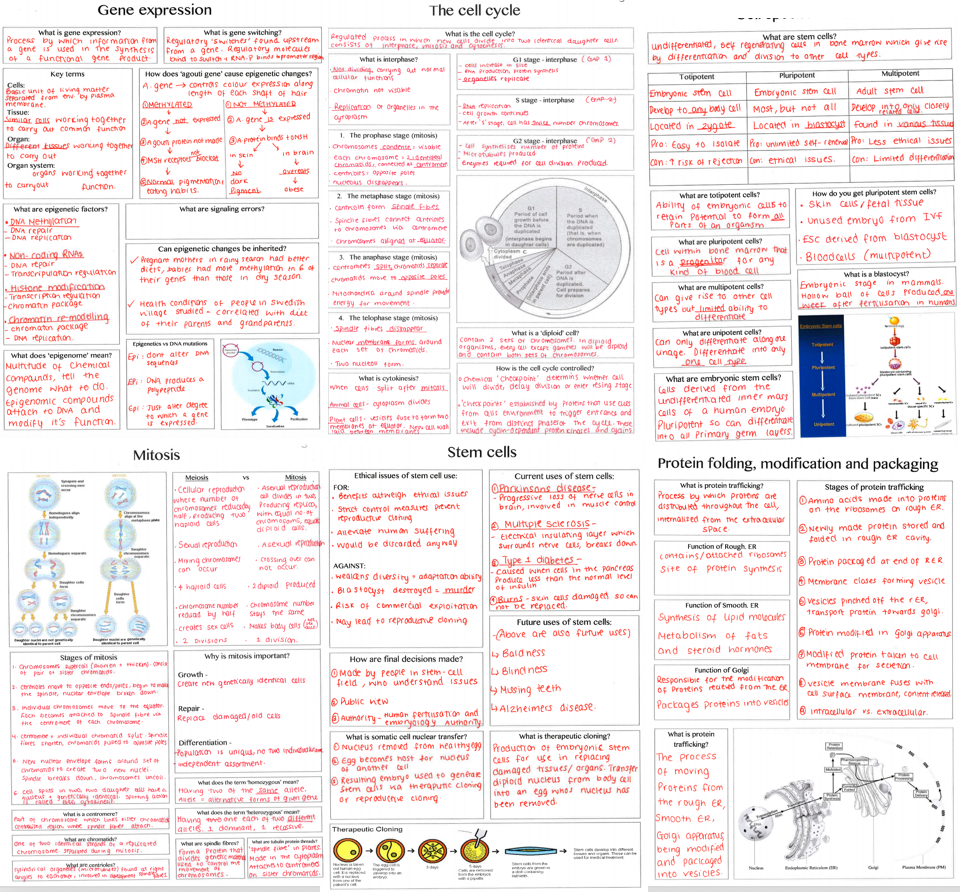 Biology Alevel (SNAB) paper 2 revision summary sheets -blank templates & completed