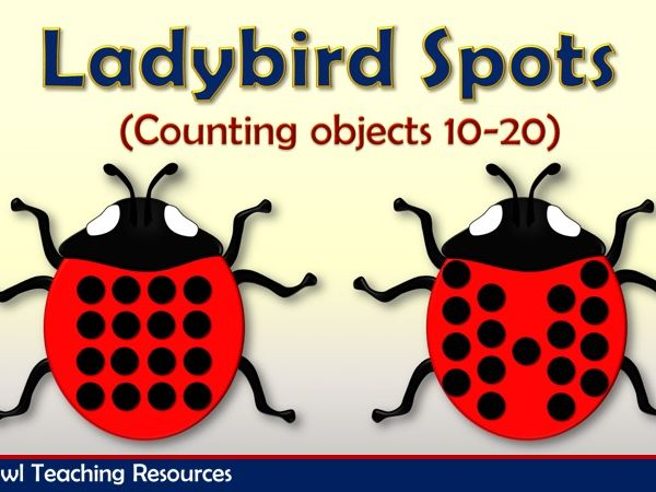 Ladybird Spots Counting 10 - 20