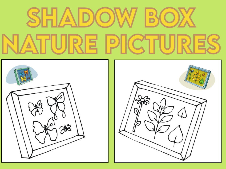 Shadow Box Nature Trail