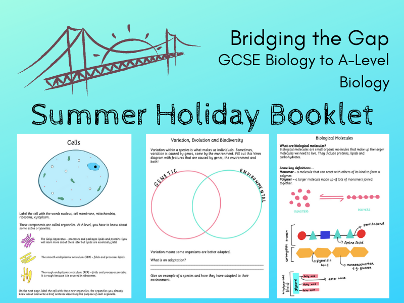 Biology GCSE to A-Level: Bridging the Gap