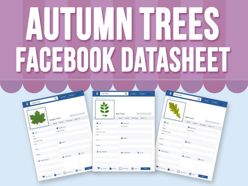Autumn Trees - Facebook Datasheet