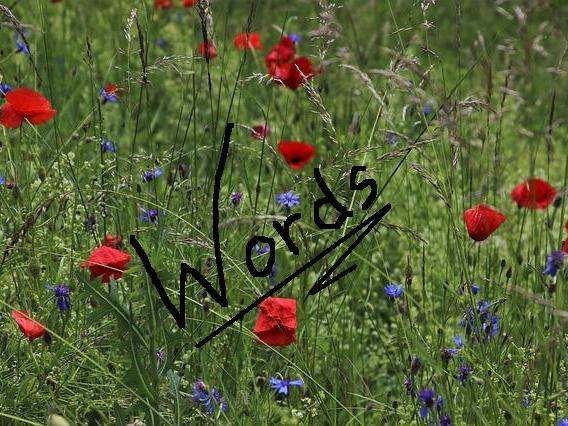 MEADOW - Picture-Writing