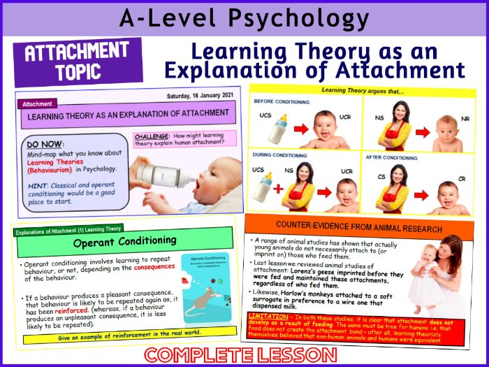 A-Level Psychology - LEARNING THEORY AS AN EXPLANATION OF ATTACHMENT (Year 1 Attachment)