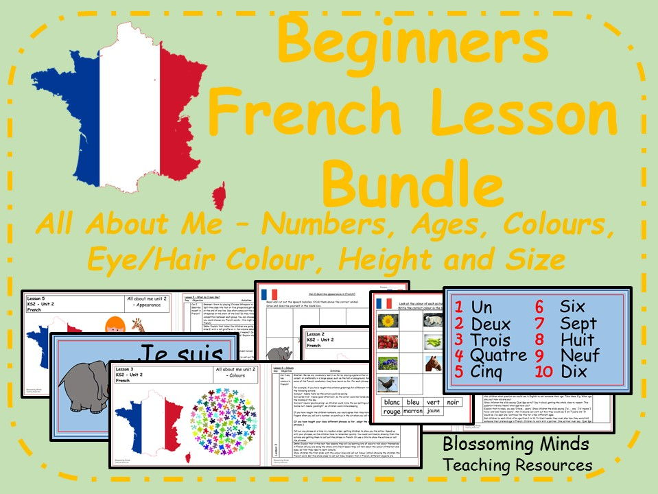 French 5 lesson bundle - All About Me