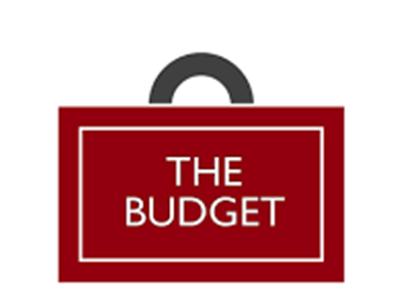 Budget Assessment & Mark Scheme