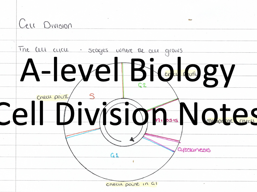 A-level Biology A* Notes - Cell Division