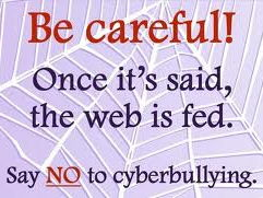 Cyber Bullying Once It Is Said, The Web Is Fed