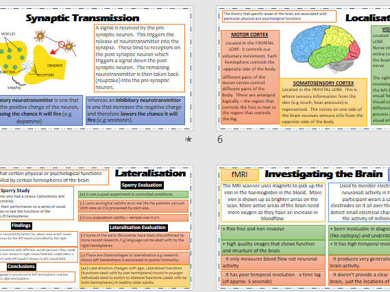 BIOPSYCHOLOGY Revision Powerpoint - AQA Psychology