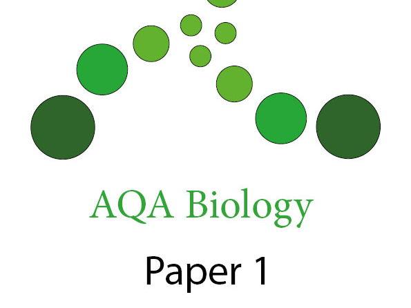 Aqa biology essay plans