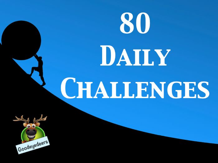 80  Daily Challenges