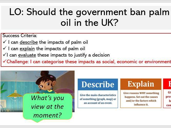 L6. Palm Oil