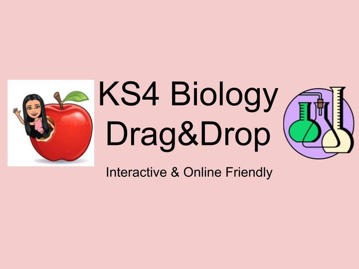 KS4 Biology Drag&Drop Activity