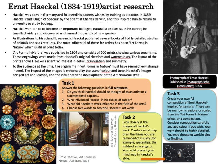 Ernst Haeckel artist research and analysis worksheet