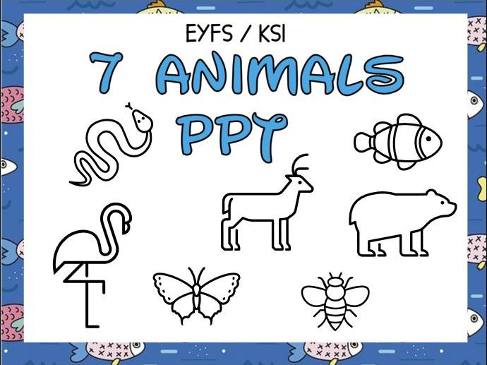 7 Kinds of Animals PPT and Activity EYFS / KS1