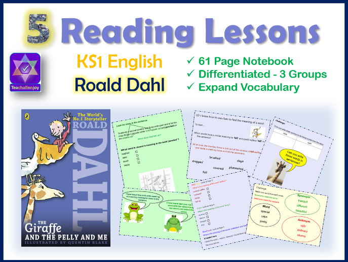 Year 2 Reading Lessons