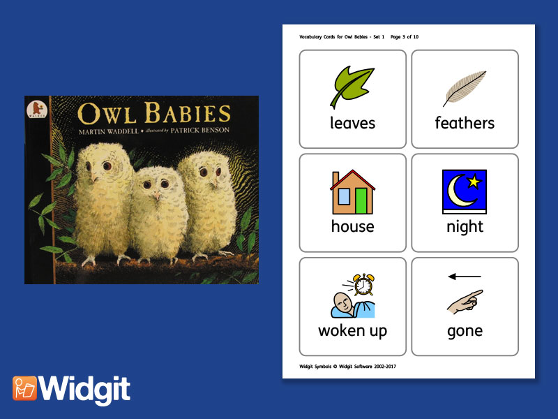 Owl Babies - Big Book Flashcards with Widgit Symbol
