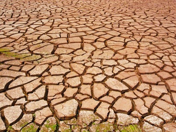 human causes of desertification