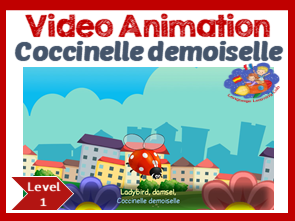 French Immersion - Coccinelle demoiselle - Video Animation & Resource