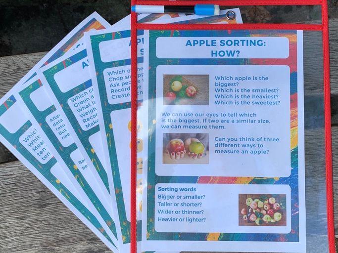 Fragonwood Outdoor maths activities  Apple sorting ordering