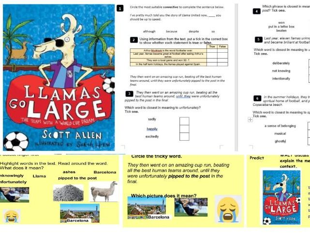 Llamas go large guided reading