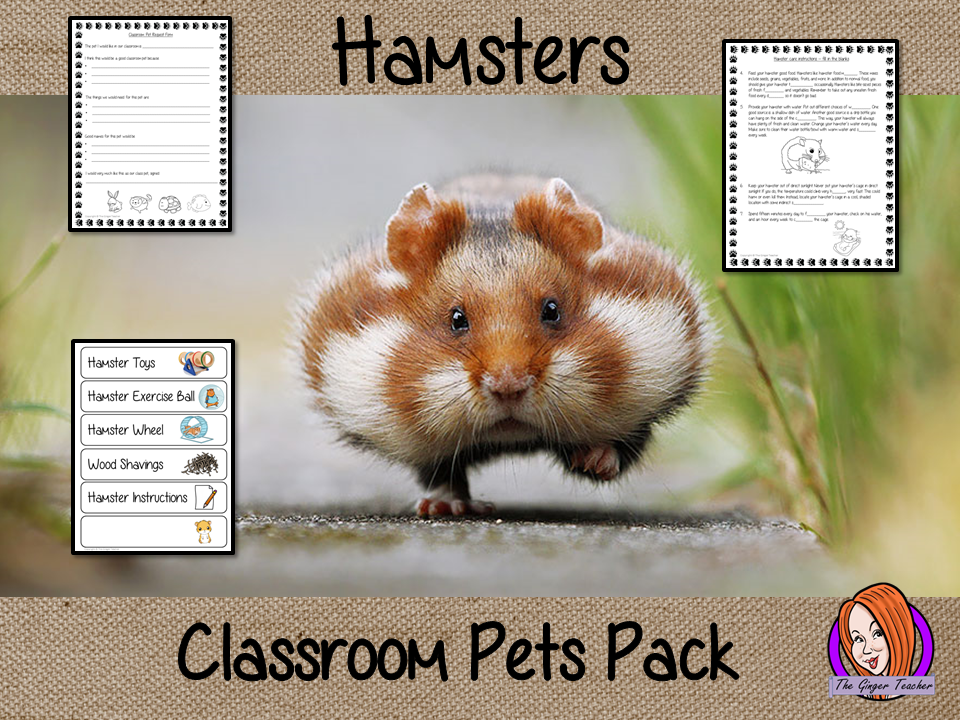 Looking After Hamsters Classroom Pets Pack